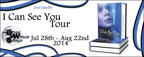 Spotlight & $100 Amazon Giveaway: I Can See You by Joss Landry