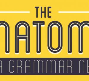 Do you fit the grammar nerd profile?