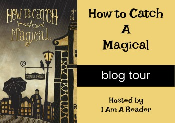 How-to-Catch-a-Magical-Tour